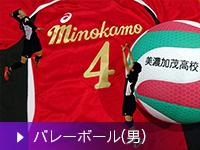 高等学校バレーボール部(男子)