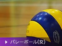 高等学校バレートボール部(女子)